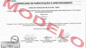 certificação no curso nr 35-bh
